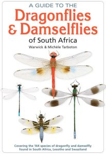 a guide to dragonflies by warwick michele tarboton