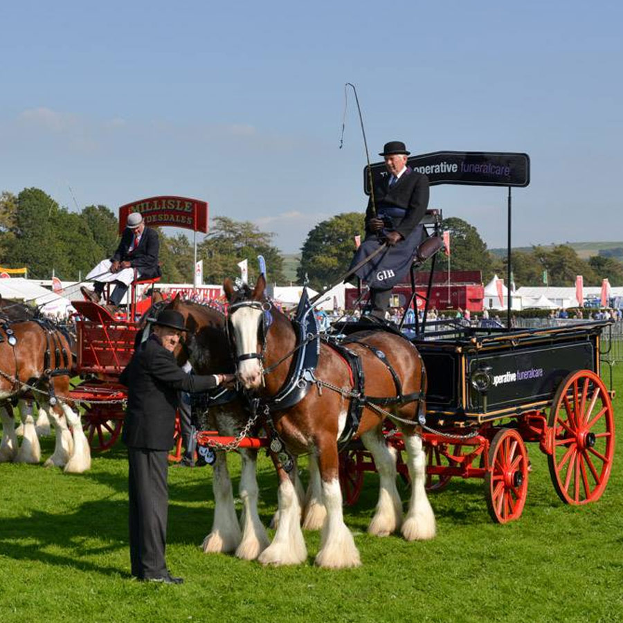westmorland county show carriages
